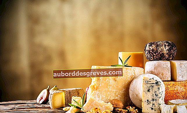 Alles, was Sie wissen müssen, um den Käse in gutem Zustand zu halten