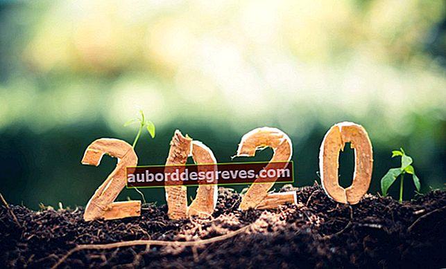 Neujahrs-Special: Organisieren Sie einen Silvesterabend ohne Verschwendung