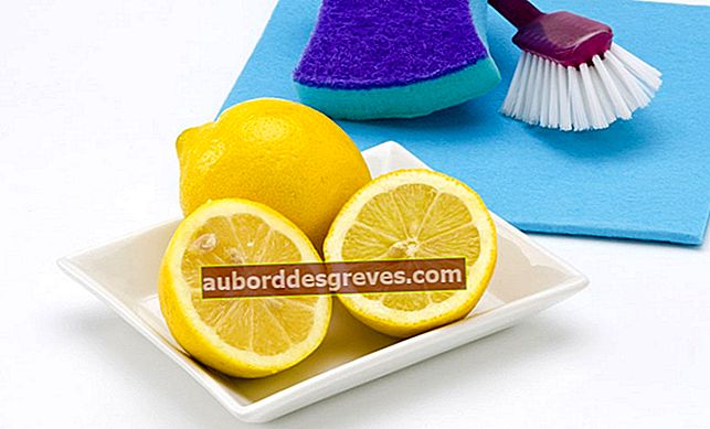 레몬으로 화장실 청소하기
