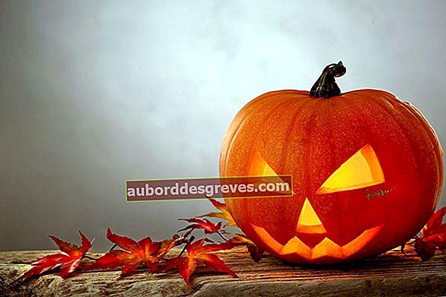 Halloween: 7 consigli di decorazione per una serata di successo
