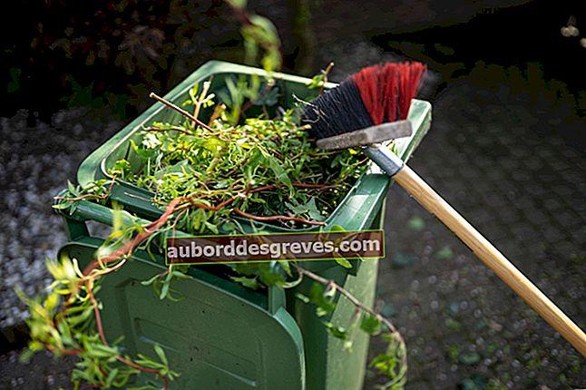 Verbrennung von Grün- oder Hausmüll im Garten: Was das Gesetz sagt