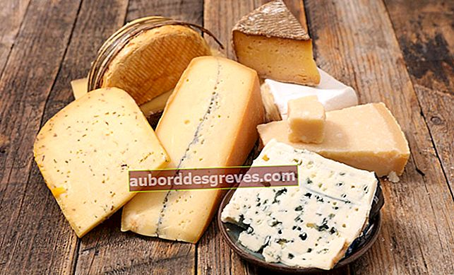 치즈의 성공적인 냉동을위한 7 가지 팁