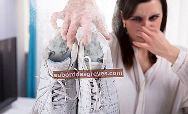 신발의 악취 제거
