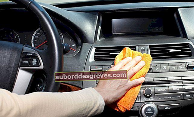 Reinigen Sie den Innenraum Ihres Autos mit natürlichen Produkten