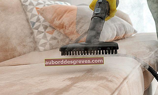 Controllo dei pidocchi: 2 consigli per pulire e disinfettare la tua casa