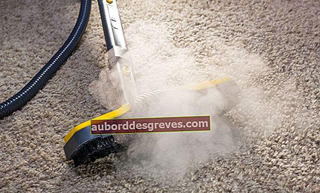 Cosa puoi pulire con un pulitore a vapore?