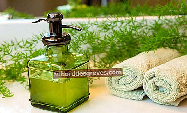 Rezept: eine ökologische und ökonomische flüssige Handseife