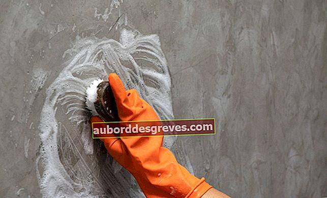 Cosa devi sapere per pulire un muro dipinto