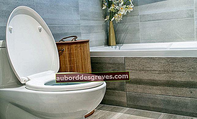 3 consigli per risparmiare l'acqua della toilette