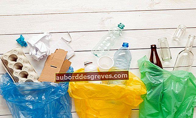 Sortieren: Was soll nicht in den Papierkorb geworfen werden?