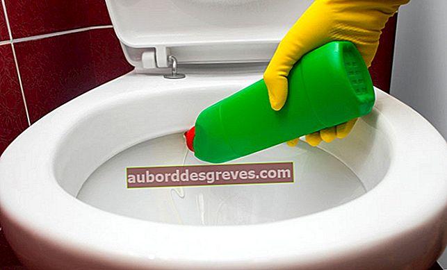 Ricetta: un gel detergente per la toilette.