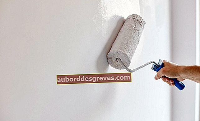Cosa devi sapere per ridipingere un muro dipinto